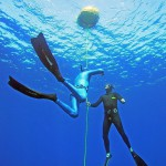 Freediving-Buddies